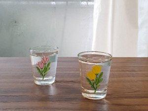 フラワーソジュグラス:チューリップペアセット(2カラー)