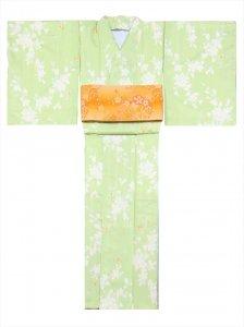 洗える着物 sk-24  黄緑地・桜柄・F寸