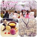 ♪4/21(日)お花見お茶会♪
