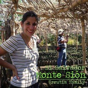 00-エルサルバドル モンテシオン農園(中煎り)
