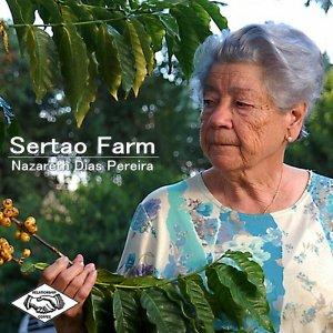 00-ブラジル セルトン農園(中煎り)