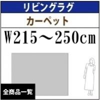 リビングラグマット&カーペットサイズ/W210  〜240cm