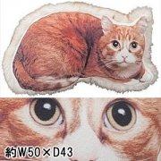【送料無料】クッション/1個/W50 D30 H13/ネコ