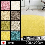 【送料無料】ラグ/カーペット/洗える/ジャスパープラス/日本製/床暖 防滑/200×200