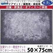 【送料無料】玄関マット ドアマット/ウォッシュ&ドライ/洗える/SHADES グレー/50×75cm
