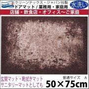 【送料無料】玄関マット ドアマット/ウォッシュ&ドライ/洗える/SHADES ブラウン/50×75cm