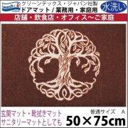 【送料無料】玄関マット ドアマット/ウォッシュ&ドライ/洗える/赤みがかった木/50×75cm