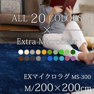 【送料無料】丸洗いOK!滑り止め加工/20カラーEXマイクロラグマット/200×200cm