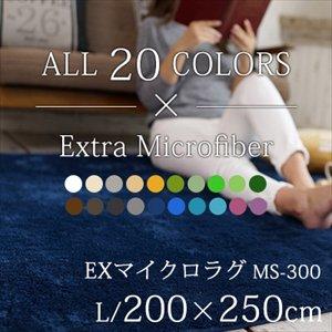 【送料無料】丸洗いOK!滑り止め加工/20カラーEXマイクロラグマット/200×250cm
