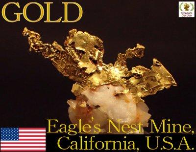 [自然金 石英付き結晶] アメリカ カリフォルニア州産 (ゴールド/gold/ナゲット/原石/鉱物/山金/砂金/販売)
