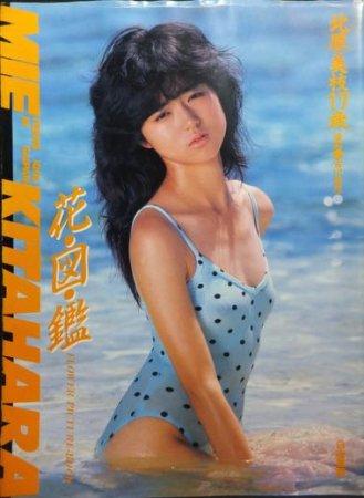 花図鑑 北原美枝17歳』(かわいさとみ) - 澱夜 ...: http://oryo-books.shop-pro.jp/?pid=48476832