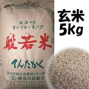 平成29年産米  てんたかく玄米  5kg