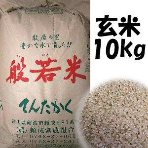 平成29年産米  てんたかく玄米  10kg