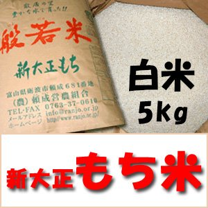 平成29年産  特別栽培米 新大正もち 白米 5kg