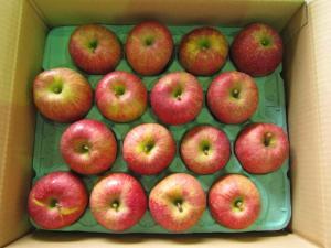 自家用りんご 5kg(12〜18個入)