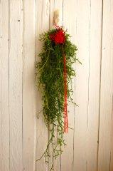 ひと葉のお正月飾り・掛蓬莱
