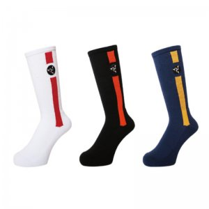 <img class='new_mark_img1' src='//img.shop-pro.jp/img/new/icons14.gif' style='border:none;display:inline;margin:0px;padding:0px;width:auto;' />WHIMSY POZESSION SOCKS