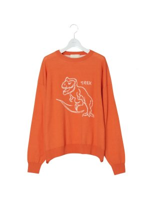 <img class='new_mark_img1' src='//img.shop-pro.jp/img/new/icons14.gif' style='border:none;display:inline;margin:0px;padding:0px;width:auto;' />NEON SIGN T-rex Sweater