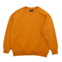 https://img08.shop-pro.jp/PA01038/428/product/160980225_th.png?cmsp_timestamp=20210906200158の商品画像