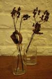 ガラス瓶 (Small)