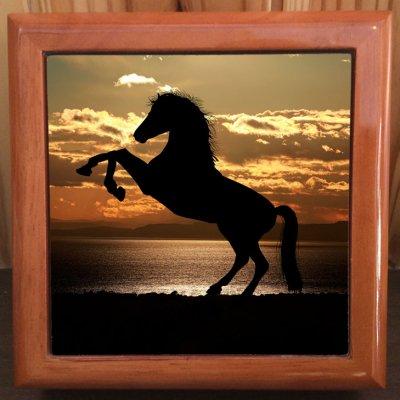 「日没の馬」写真小物入れ