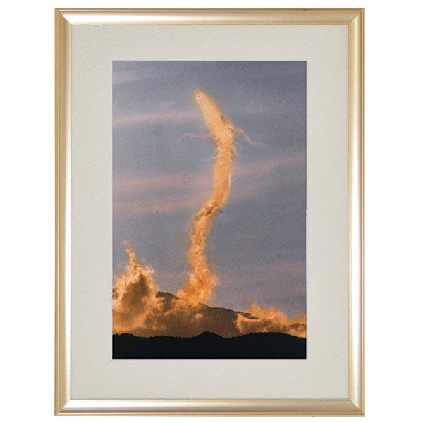 NK−1012  奇跡の写真 金龍 きんりゅう