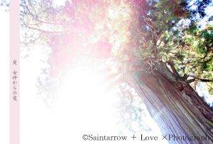 No.3 【女神からの愛】 ポストカード