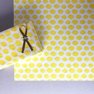 レモンのペーパー5枚セット