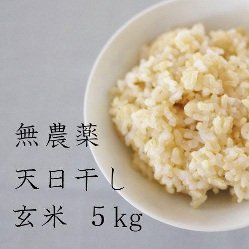 無農薬 天日干し 玄米 5kg 【送料無料】