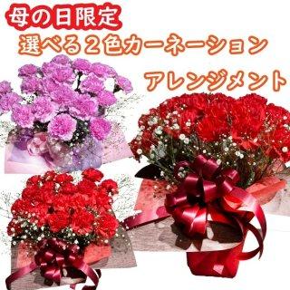 THANKS ブーケ(ピンク系/3,000円)