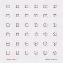 Saverio Celestri / Reality is not Reality (Limited Edition) -2LP+10