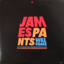 JAMES PANTS / WELCOME -2LP- (USED)