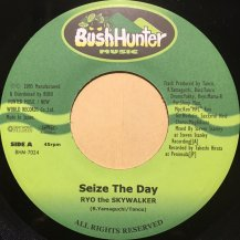 RYO the SKYWALKER / Seize The Day (USED)