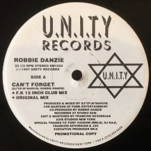 ROBBIE DANZIE / CAN'T FORGET (USED)