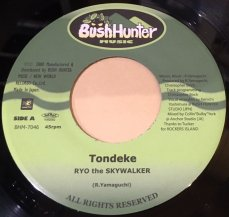 Ryo the Skywalker / TONDEKE (USED)