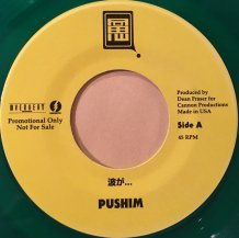 Pushim / FOR YOUR SONG (USED)