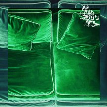 GREEN ASSASSIN DOLLAR / POINT OF THE VIEW (特典付き)