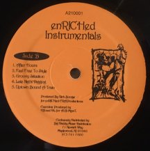 RICH BOOGIE / ENRICHED INSTRUMENTALS -LP- (USED)