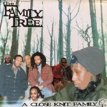 FAMILY TREE / CLOSE KNIT FAMILY -2LP- (USED)
