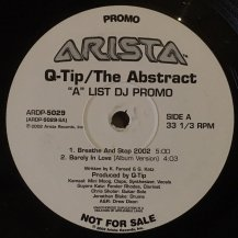Q-TIP / THE ABSTRACT (