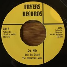 THE POLYVERSAL SOULS / SAD NILE (USED)