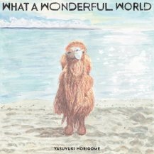 堀込泰行 / What A Wonderful World -LP-