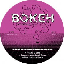 BUSH CHEMISTS / I CAME I SAW REMIXES