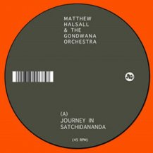 MATTHEW HALSALL & THE GONDWANA ORCHESTRA / JOURNEY IN SATCHIDANANDA / BLUE NILE