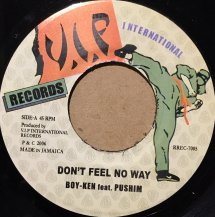 BOY-KEN feat. PUSHIM / DON'T FEEL NO WAY (USED)