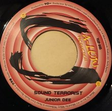 JUNIOR DEE / SOUND TERRORIST (USED)