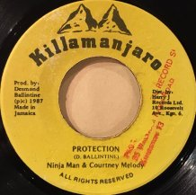 Ninja Man & Courtney Melody / PROTECTION (USED)