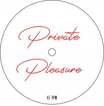 V.A. / PRIVATE PLEASURE