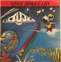 ONENESS OF JUJU / SPACE JUNGLE LUV -LP- (USED)