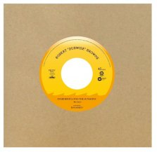 ROBERT 'DUBWISE' BROWNE / EVERYBODY LOVES THE SUNSHINE